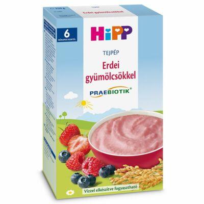HiPP Erdei gyümölcsös tejpép